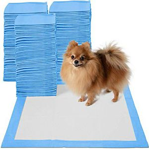New in box 200pcs 24x24 inches pet wee pee piddle pad pet house training pads for Sale in Whittier, CA