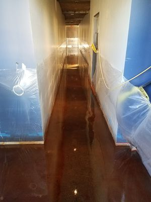 Epoxy floors and stains for Sale in San Tan Valley, AZ