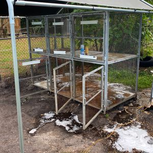 Dog Kennel $500 for Sale in Tampa, FL