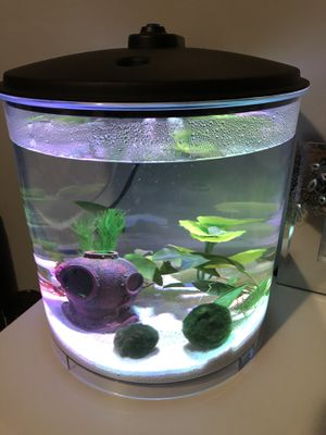 Fish Tank for Sale in Melrose Park, IL