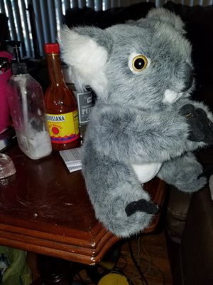 Koala bear stuffed for Sale in Greenville, SC