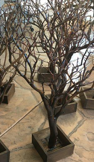 Manzanita Tree / Wedding / Quinceanera / Jewelry Hanger / Wishing Tree / Fall / Harvest Decor for Sale in San Marcos, CA