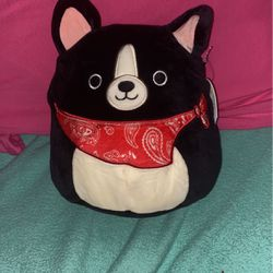 Teddy the dog squishmallow for Sale in Bellevue,  WA