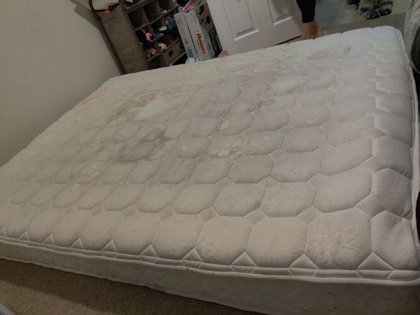 Free Queen Bed Super Comfy Sorry For The Stains My Toddlers Tippy Cups Leak There Is Absolutely No Human/Pet Liquids On This Bed