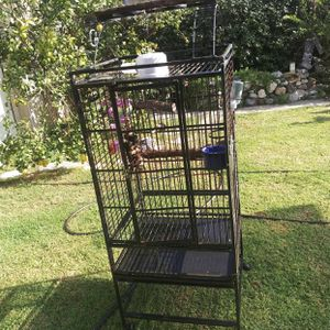 Parrot Cage $60 for Sale in Los Angeles, CA