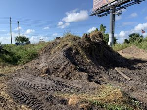 Compost pile/ fill dirt FREE for Sale in Orlando, FL