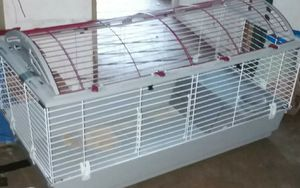 Cage for Sale in Lakeland, FL