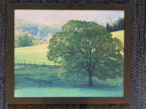 Season Changing Picture Wall Hanging for Sale in Bonney Lake, WA