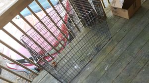 Dog crate for Sale in St. Louis, MO