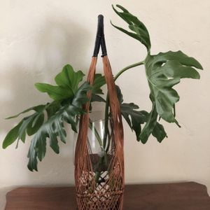 Boho Wicker and black plastic woven vase holder. Vase has etched flowers. Very boho seventies cool feel! for Sale in Phoenix, AZ