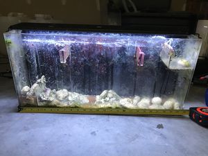 Aquarium Refugium Hang on the back for Sale in Raleigh, NC