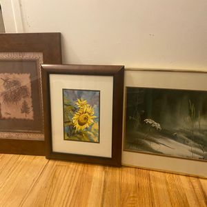 3 nature pictures all framed All framed and in great condition Comes with all pictured for Sale in Aurora, CO