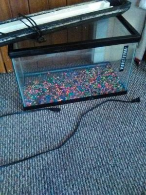 10 gallan fish tank for Sale in Cleveland, OH