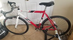 Bike Lamborghini Rapido Road Bicycle 22.5 inch Frame. For Woman fit. Mint Condition. for Sale in Miramar, FL