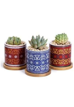 Greenaholics Succulent Pots - 3 Inch Morocco Pattern Cylinder Ceramic Planters for Small Succulent, with Bamboo Saucers, Set of 3 for Sale in Piscataway, NJ