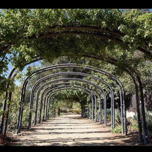 Descanso Garden Free Ticket for Sale in Redondo Beach, CA