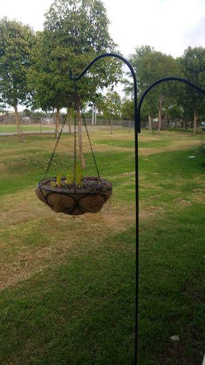 Flower pot holder and hanging plants. for Sale in Oceanside, CA