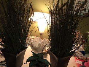 Decorative fake plants w cute planters for Sale in Buffalo, NY