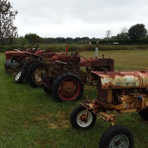 Farmall cubs for sale for Sale in Bowling Green, FL