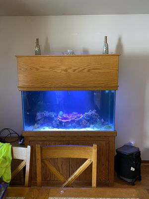 Fish Tank for Sale in Highland, IN