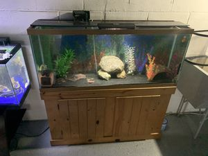 4 fish tanks for Sale in Bloomington, IL