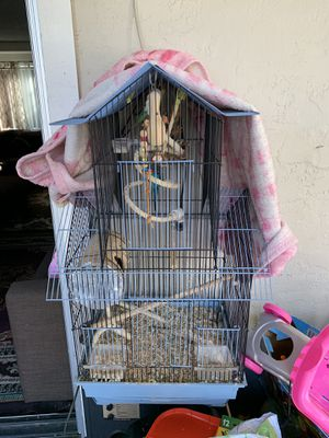 Free fish tank and fishes also births and cage for Sale in Los Altos, CA