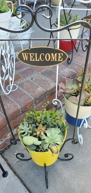 2pc Beautiful welcome/bienvenidos rectangular plant stand with planter packed with succullents for Sale in Anaheim, CA