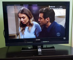 Don't Bravia - 32inch TV with Stand for Sale in Laguna Beach, CA