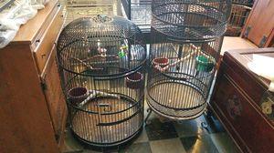 Tweedy bird wrought iron bird cages, Mexico for Sale in Vista, CA