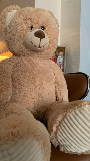 Mr.Bear for Sale in Lake Mary, FL