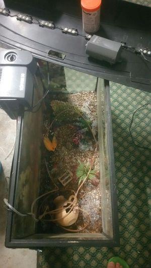 Fish tank for Sale in Harrisonburg, VA