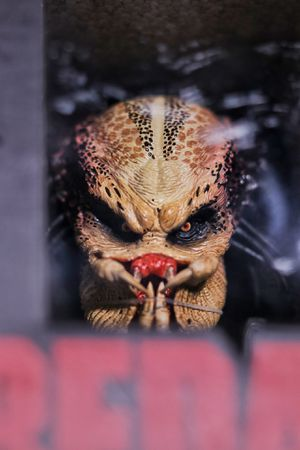 """Original Predator """"Hot Toys"""" 1/4 Scale Collectible Bust $180 OBO for Sale in Los Angeles, CA"""