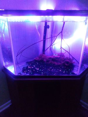 Corner Aquarium,stand,two filters and decorations. for Sale in Baytown, TX