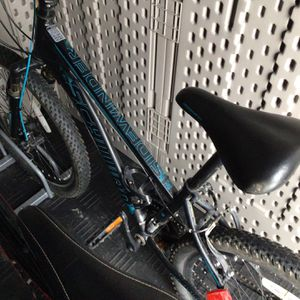 Schwinn Sidewinder 21 Speed Mountain Bike for Sale in Buffalo, NY