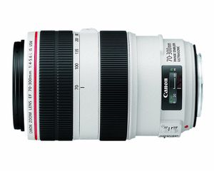 Canon EF 70-300 mm f/4-5.6 IS II USM lens for Sale in New York, NY