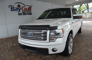 2014 Ford F150 for Sale in Tampa, FL