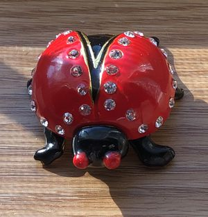 Brand New Lady Bug Trinket Box for Sale in Lake Elmo, MN