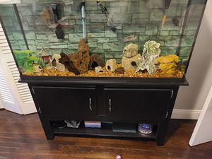 65 gallon Tank, stand and lights for Sale in Warren, RI