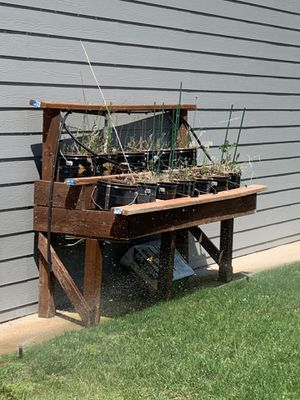 Gardening Plant Station for Sale in Orondo, WA