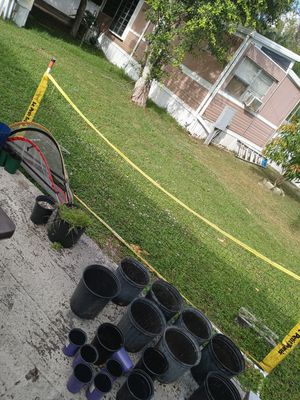 Net for Sale in Lake Worth, FL