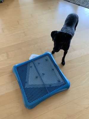 Dog Pee Pad for Sale in Portland, OR