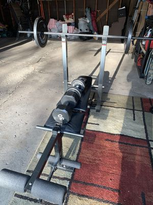 Fit For Life Bench Press w/ additional weights and dumbbells for Sale in Wood Dale, IL