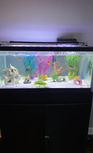 40-50 gallons fish tank with stand for Sale in North Riverside, IL