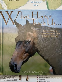 What Horses Teach Us : Life's Lessons Learned From Our Equine Friends By Glenn Dromgoole Book for Sale in Chula Vista,  CA