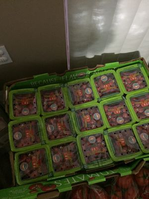 Fresh tomatoes are only $20 for full box of tomatoes for Sale in Hollywood, FL
