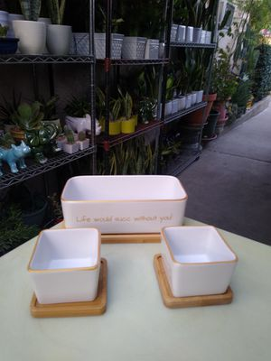 DECORATIVE SUCCULENT PLANTERS SET for Sale in Paramount, CA