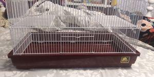 Hamster cages for Sale in Norfolk, VA
