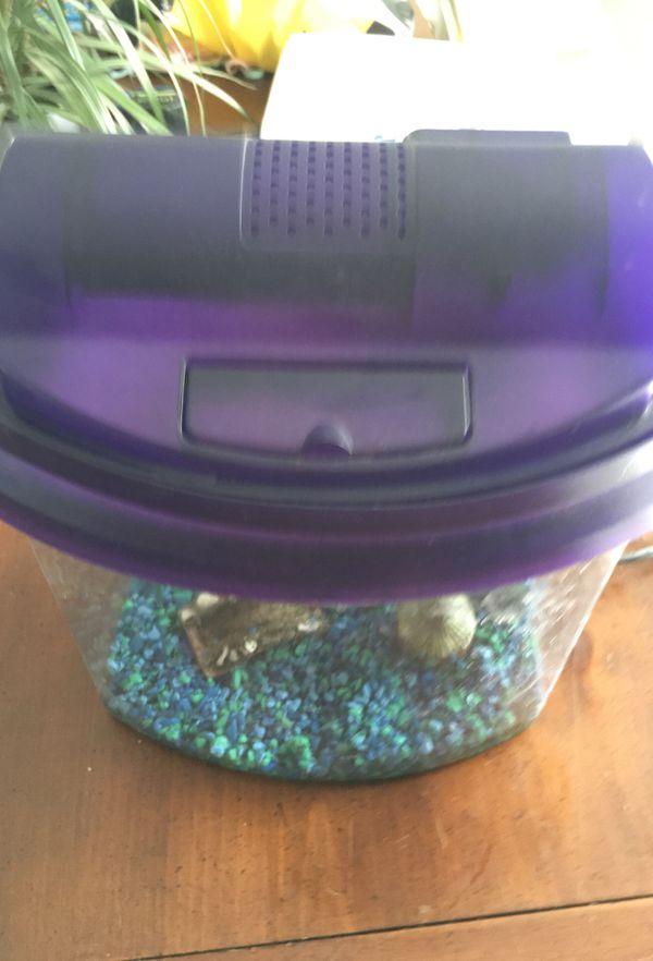 Fish Aquarium with filter.