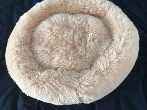 Orthopedic Cat Bed for Sale in Charlottesville, VA