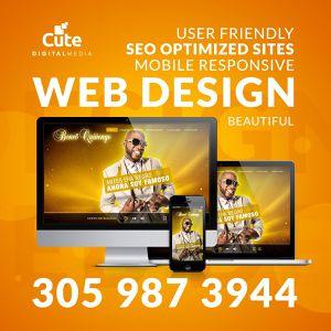 Web Design and Development for Sale in Miami, FL